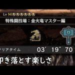 【MHW:IB】リオレイア希少種 ハンマー 3分19秒70【アイスボーン】