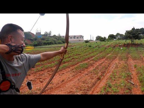 45磅美洲长弓密集射击,挨一下绝对活不了Chinese Archery