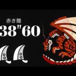 MHWI ムフェトジーヴァ 大剣×大剣ペア 赤き龍 7'38″60/The Red Dragon Pursuit Lv1 Safi Jiva GreatSword×GreatSword duo
