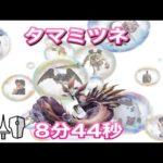 【MHrise demo版】タマミツネ ランス ソロ 8分44秒 / Mizutsune Lance Solo