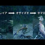 【MHRise】わらしべ操竜