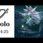 【MHRise体験版】タマミツネ 太刀 ソロ 04:25