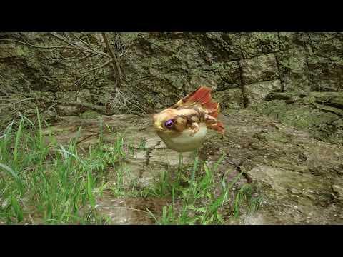 【第二十四項】『モンスターハンターライズ』映像見聞録  環境生物紹介 ヒオウギカワズ