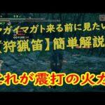 【モンハンライズ】マガイマガトが来る前に見たい狩猟笛解説!!