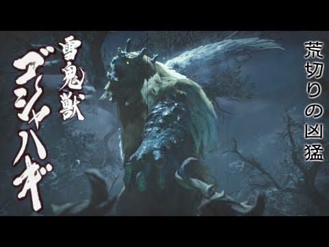 【モンスターハンターライズ_MHRise】村クエ ゴシャハギ討伐