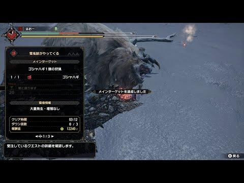 【MHRise】上位ゴシャハギ ライトボウガン(徹甲榴弾&斬裂弾) 3分12秒