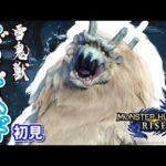 【MHRise実況】#21 初対面ゴシャハギとの殴り合い【モンスターハンターライズ】