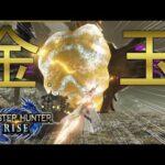 【vs.ナルハタタヒメ】ラスボスが金玉過ぎる件についてwww【モンハンRise】