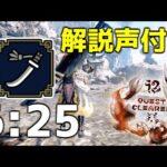 【MHRise】雷神ナルハタタヒメ 太刀ソロ 6'25 / Thunder Serpent Narwa Long Sword solo【解説付き】