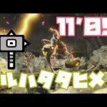 【MHRise】ナルハタタヒメ ハンマー 11分5秒