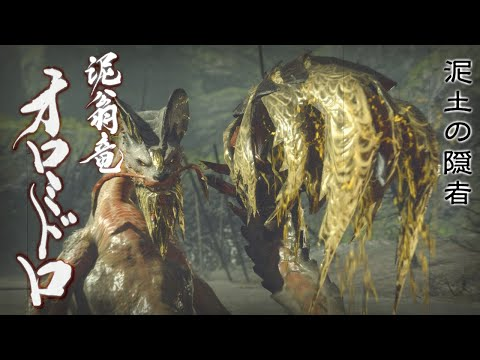 【モンスターハンターライズ_MHRise】集会所 上位 オロミドロ  ソロ討伐