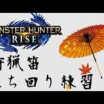 【MHRISE】狩猟笛 アケノシルム 立ち回り練習