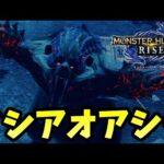 【MHRise】ヌシアオアシラが強すぎる -Part16-