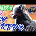 【MHRise実況】#24 ヌシアオアシラ率いる百竜夜行に挑め!【モンスターハンターライズ】