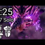 【MHRise】 上位 マガイマガド ガードリロード ガンランス ソロ 4:25 捕獲 Magnamalo Guard Reload Gunlance solo 【モンハンライズ】