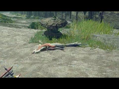 【衝撃映像】サイコパス親分オサイズチに○された子分イズチ【モンハンライズ】