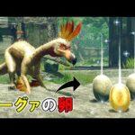 【MHRise】ガーグァの卵が道端に落ちていたら、クルルヤックは食べてしまうのか?(ゆっくり実況)